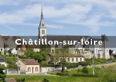 creation_site_internet_loiret_chatillon-sur-loire_standesign