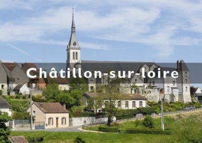 creation_site_internet_loiret_chatillon-sur-loire_standesign